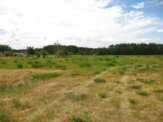 Photo 6: 23229 SH 651: Rural Sturgeon County Rural Land/Vacant Lot for sale : MLS®# E4150580