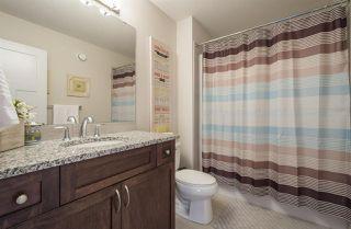 Photo 23: 2441 WARE Crescent in Edmonton: Zone 56 House for sale : MLS®# E4154652