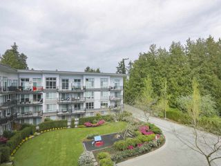 Photo 15: 426 12039 64 Avenue in Surrey: West Newton Condo for sale : MLS®# R2369916