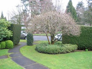 Photo 14: 5515 Churchill Street in Vancouver: Shaughnessy Home for sale ()