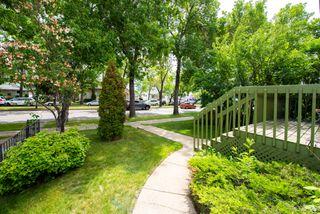 Photo 9: 11128 97 Street in Edmonton: Zone 08 House for sale : MLS®# E4162304
