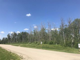 Photo 3: 37 53524 RGE RD 275: Rural Parkland County Rural Land/Vacant Lot for sale : MLS®# E4162598