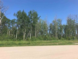 Main Photo: 37 53524 RGE RD 275: Rural Parkland County Rural Land/Vacant Lot for sale : MLS®# E4162598