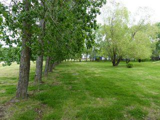 Photo 16: 57 27507 Twp. 544: Rural Sturgeon County House for sale : MLS®# E4193917