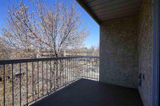 Photo 32: 403 11045 123 Street in Edmonton: Zone 07 Condo for sale : MLS®# E4195774