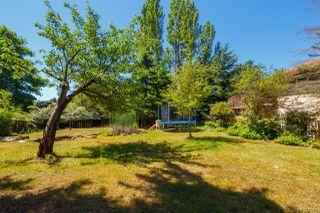 Photo 8: 4781 Cordova Bay Rd in : SE Cordova Bay House for sale (Saanich East)  : MLS®# 850897