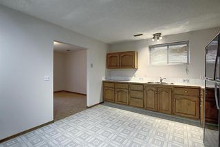 Photo 23: 2218 19 Street NE in Calgary: Vista Heights Detached for sale : MLS®# A1041031