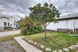 Photo 41: 2218 19 Street NE in Calgary: Vista Heights Detached for sale : MLS®# A1041031