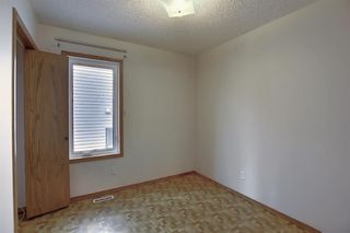 Photo 21: 2218 19 Street NE in Calgary: Vista Heights Detached for sale : MLS®# A1041031