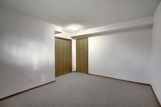 Photo 33: 2218 19 Street NE in Calgary: Vista Heights Detached for sale : MLS®# A1041031