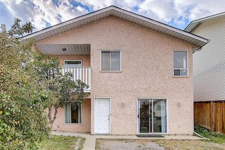Photo 39: 2218 19 Street NE in Calgary: Vista Heights Detached for sale : MLS®# A1041031