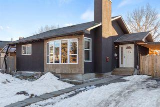 Main Photo: 19 Castlepark Way NE in Calgary: Castleridge Detached for sale : MLS®# A1060588