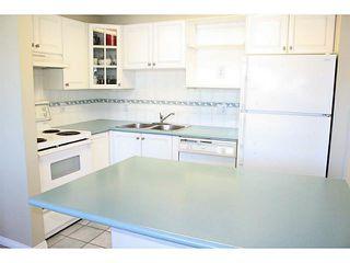 Photo 7: 407 1650 GRANT Avenue in Port Coquitlam: Glenwood PQ Condo for sale : MLS®# V1093325