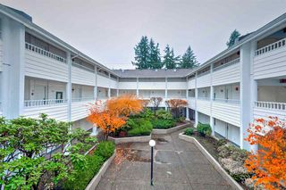 Photo 14: 208 707 EIGHTH Street in New Westminster: Uptown NW Condo for sale : MLS®# R2125520