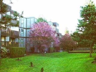 """Photo 12: 402 9672 134 Street in Surrey: Whalley Condo for sale in """"Parkwoods - Dogwood"""" (North Surrey)  : MLS®# R2155984"""