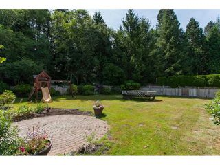 Photo 19: 3132 142 Street in Surrey: Elgin Chantrell House for sale (South Surrey White Rock)  : MLS®# R2187682
