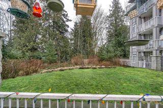 """Photo 14: 228 13277 108 Avenue in Surrey: Whalley Condo for sale in """"PACIFICA"""" (North Surrey)  : MLS®# R2245436"""
