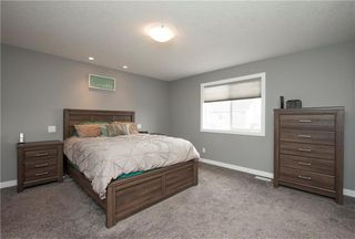 Photo 29: 101 BAYSIDE Loop SW: Airdrie House for sale : MLS®# C4181256