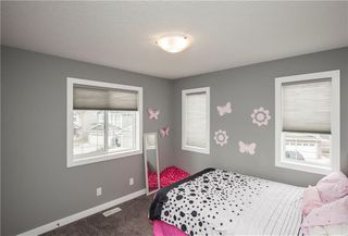 Photo 35: 101 BAYSIDE Loop SW: Airdrie House for sale : MLS®# C4181256