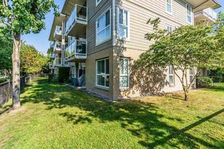 "Photo 13: 109 22255 122 Avenue in Maple Ridge: West Central Condo for sale in ""MAGNOLIA GATE"" : MLS®# R2272344"
