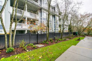 Photo 14: 204 6893 PRENTER Street in Burnaby: Highgate Condo for sale (Burnaby South)  : MLS®# R2325080