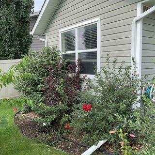 Photo 5: 10211 110A Avenue: Westlock House for sale : MLS®# E4155384