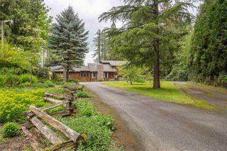 Photo 20: 26227 62 Avenue in Langley: County Line Glen Valley House for sale : MLS®# R2367416