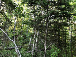 Photo 6: 39 Fairway Drive in Lac Du Bonnet RM: Granite Hills Residential for sale (R28)  : MLS®# 1914841
