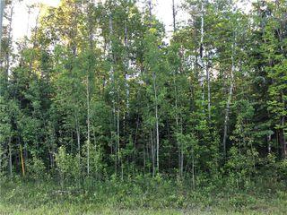 Photo 4: 39 Fairway Drive in Lac Du Bonnet RM: Granite Hills Residential for sale (R28)  : MLS®# 1914841