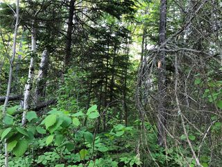 Photo 9: 39 Fairway Drive in Lac Du Bonnet RM: Granite Hills Residential for sale (R28)  : MLS®# 1914841