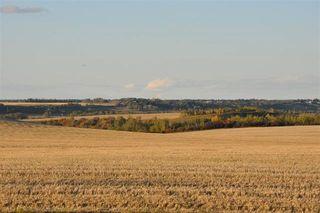 Photo 6: 14 Riverridge Crescent: Rural Sturgeon County Rural Land/Vacant Lot for sale : MLS®# E4162689