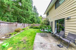 Photo 12: 1232 OXBOW Way in Coquitlam: River Springs House for sale : MLS®# R2385262