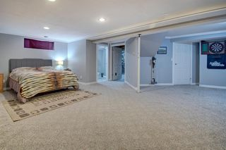 Photo 37: 63 MT Apex Green SE in Calgary: McKenzie Lake Detached for sale : MLS®# A1009034