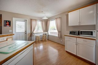 Photo 6: 63 MT Apex Green SE in Calgary: McKenzie Lake Detached for sale : MLS®# A1009034