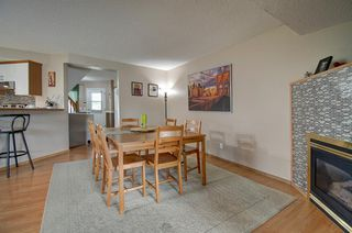 Photo 13: 63 MT Apex Green SE in Calgary: McKenzie Lake Detached for sale : MLS®# A1009034