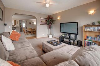 Photo 21: 63 MT Apex Green SE in Calgary: McKenzie Lake Detached for sale : MLS®# A1009034