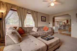 Photo 20: 63 MT Apex Green SE in Calgary: McKenzie Lake Detached for sale : MLS®# A1009034
