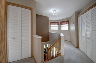 Photo 27: 63 MT Apex Green SE in Calgary: McKenzie Lake Detached for sale : MLS®# A1009034