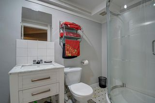 Photo 35: 63 MT Apex Green SE in Calgary: McKenzie Lake Detached for sale : MLS®# A1009034