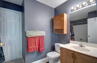 Photo 29: 63 MT Apex Green SE in Calgary: McKenzie Lake Detached for sale : MLS®# A1009034