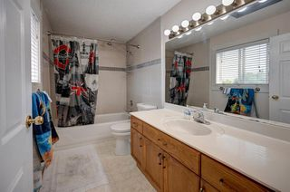 Photo 26: 63 MT Apex Green SE in Calgary: McKenzie Lake Detached for sale : MLS®# A1009034