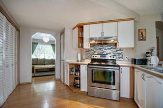 Photo 5: 63 MT Apex Green SE in Calgary: McKenzie Lake Detached for sale : MLS®# A1009034
