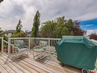 Photo 23: 323 DOUGLAS RIDGE Mews SE in Calgary: Douglasdale/Glen Detached for sale : MLS®# A1011122