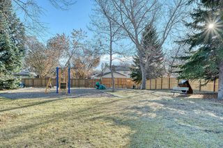 Photo 18: 383 Templeside Circle NE in Calgary: Temple Detached for sale : MLS®# A1045031