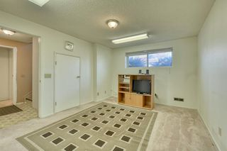 Photo 11: 383 Templeside Circle NE in Calgary: Temple Detached for sale : MLS®# A1045031