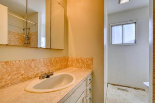 Photo 9: 383 Templeside Circle NE in Calgary: Temple Detached for sale : MLS®# A1045031