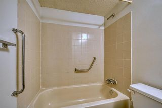Photo 14: 383 Templeside Circle NE in Calgary: Temple Detached for sale : MLS®# A1045031