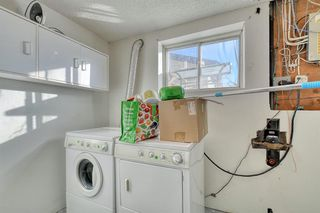 Photo 13: 383 Templeside Circle NE in Calgary: Temple Detached for sale : MLS®# A1045031