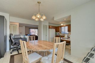 Photo 5: 383 Templeside Circle NE in Calgary: Temple Detached for sale : MLS®# A1045031