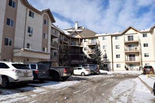 Main Photo: 215 11218 80 Street in Edmonton: Zone 09 Condo for sale : MLS®# E4223856